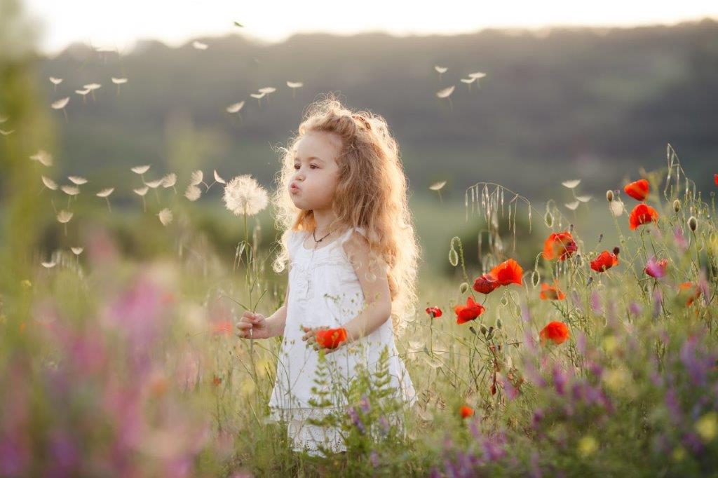 Pollen und Heuschnupfen